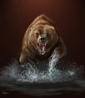 Grizzly encounter by Hagge