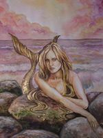 Sirena by fnet