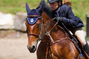 Bromont 09 aout 2015_04 by godefroy1096
