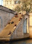 Parisian Stairway by Chillyjilly23