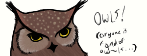 Owl head doodle (Revised) by ZannaCox