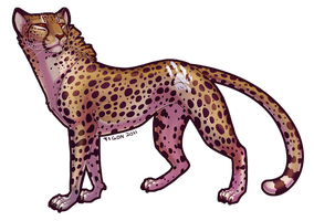 A cheetah by tigon