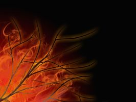 Branches On Fire by crazymonkey82394