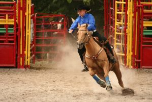 Barrel Racing - IV by froggynaan