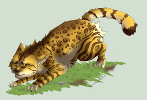 No. 6 Leopardstar by Leopard-Of-Shadows