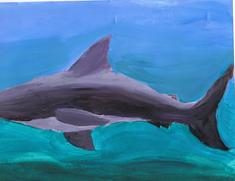 Shark in the Water by Stella--Marie
