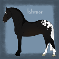Ishmor Import 27 by RodeoLuvr