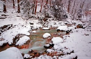 Snowy River by Burtn