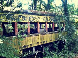 Abandoned Train: Return To Nature by TemariAtaje