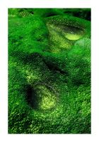 Green Stones II by morphi1972