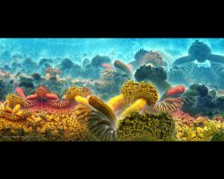 Alienreefs by love1008
