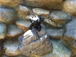 Toothless On His Rock Kingdom by BeautifulHusky