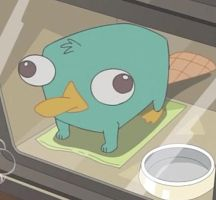 Perry The Platypus by di-lyn