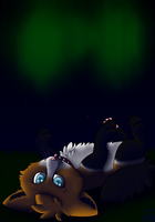 PC For Eeyes: Northen lights by SaraTheDog848