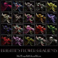Brigitte's Flower Gradients by Brigitte-Fredensborg