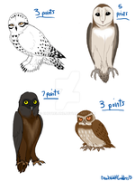 Owl Adoptables- CLOSED by Wolf-Goddess13
