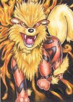 Arcanine on fire by Seelenwald