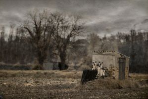 Matches's cottage by Anupthra