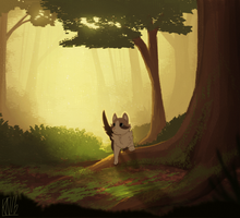 Forest Cat by Urswurs