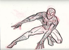 Spider-Man DSC by rockie-squirrel