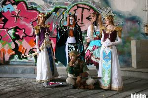 Twilight Princess group by Narayu