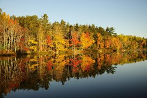 Reflected Fall by wormwood58