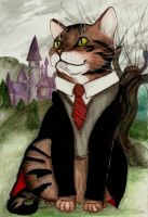 Leon in Gryffindor by matali