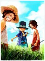 ONE.PIECE.full.1374209 by Whiteworld6
