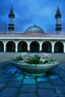 malmo.mosque by lechistani