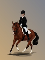 POYS 2014 Qualifiers - SSS Le Disko by DalRiataStables