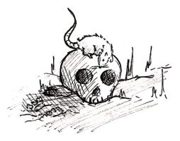 Rat And Skull by Delude