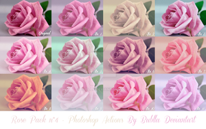 Pack n4 Roses Photoshop Actions by Bublla