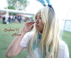 Alice In Wonderland_7 by glas-of-ice