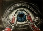Touch the Eye by rms-design