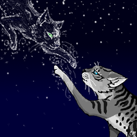 Jayfeather and Half Moon by VaporUmbreon