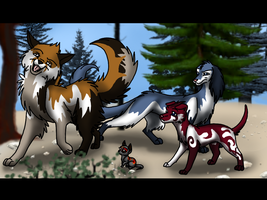 My four newest dogs for Wild-Dogs by Sonnenpelz