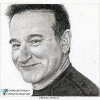 Robin Williams - RIP by Sharsel