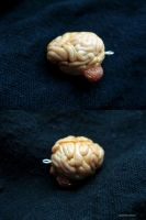 Brain on dope or dope brain? by AyahuascaAyahuasca
