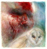 Barn Owl 2 by ChloeC