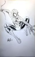 Spider-Man in Brush by JohnWOlin