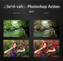 Sedrah Photoshop Action No2 by Sed-rah-Stock