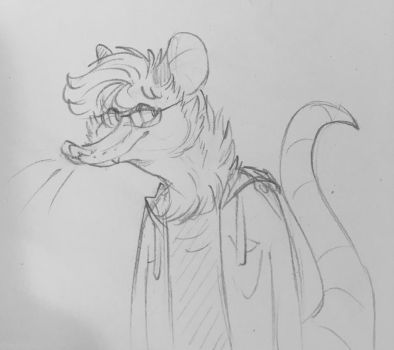 Trying to design a sona  by AwkwardAngelFox