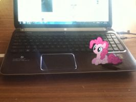 Pinkie on a Laptop by UtterlyLudicrous