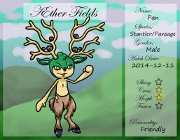 PKMNation Ref - AEther Fields - Pan by VampirateMace