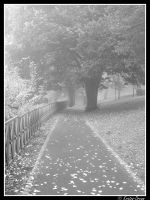 .: Walk on this Way :. by Kratos-Dream
