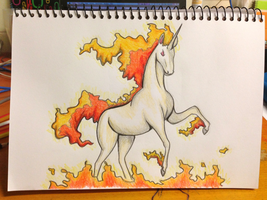 Rapidash by CarlaGriffin