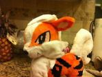 Arcanine Plushie Commission by Sparkz8D