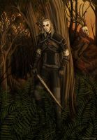 The Witcher by EvelineaErato