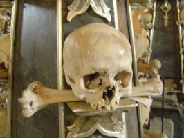Bone church skull by prudentia