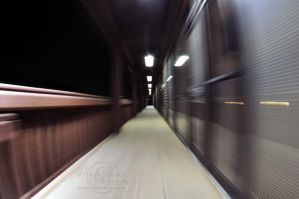 Motion Blur by MichelleRamey
